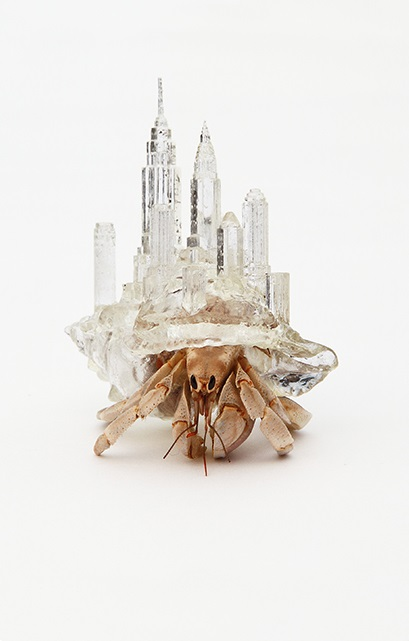 Aki Inomata Hermit Crab 3d Printing  Featured