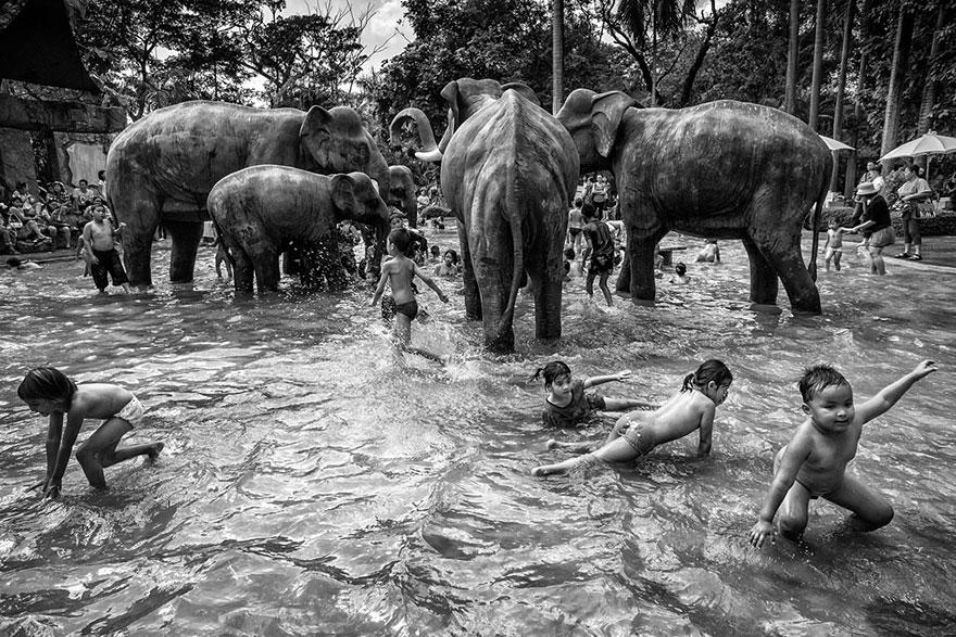 Suthas Rungsirisilp, 1st Place, Thailand National Award, 2014 Sony World Photography Awards