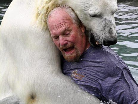 Mark And Bear