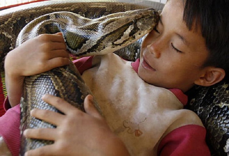 boy and his python