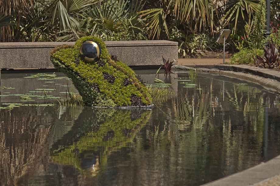 Atlanta Botanical Garden 12