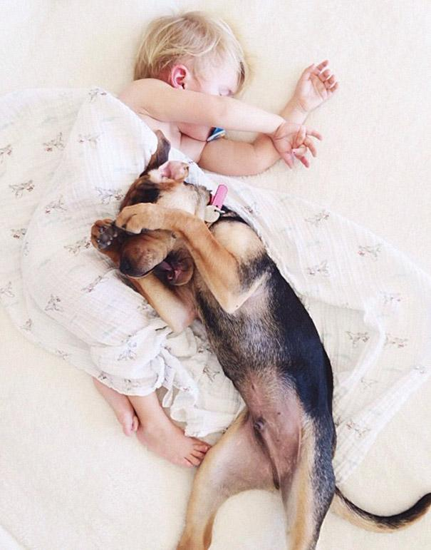 Beau And Theo Adorable Photos Of A Toddler And His Puppy - Theo beau cutest animal human pairing ever