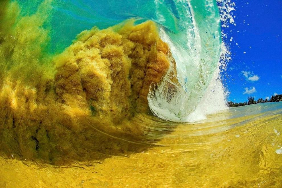 Clark Little - ocean surf wave photos 2512544