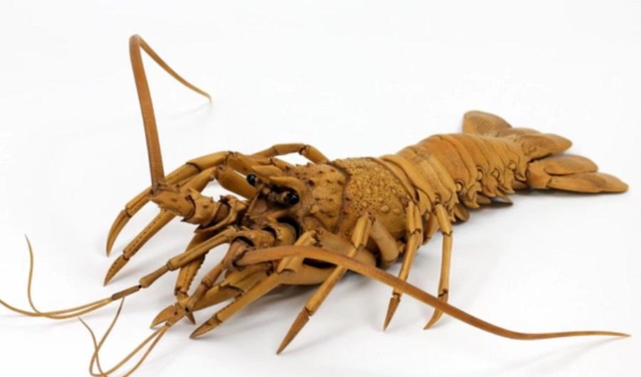 Ryousuke Ohtake - Wood Lobster 1259867