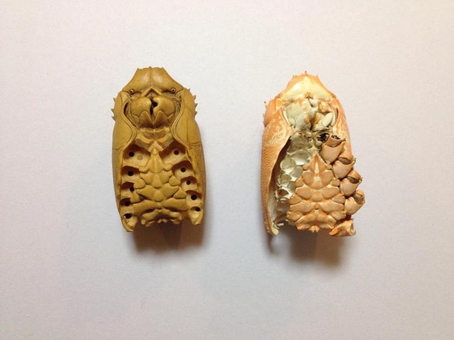 Ryousuke Ohtake - Wood Lobster 7516985