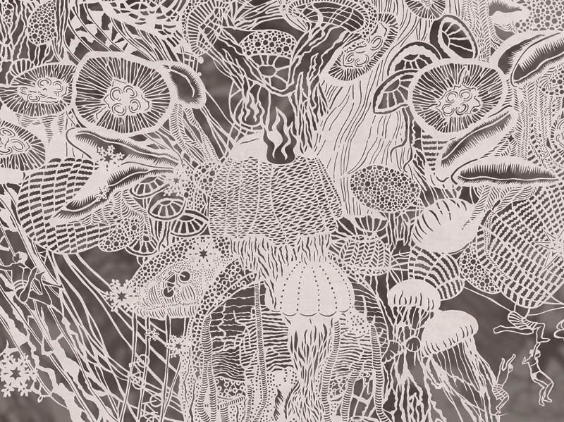 1-Bovey Lee - Cut Paper - Atomic Jellyfish