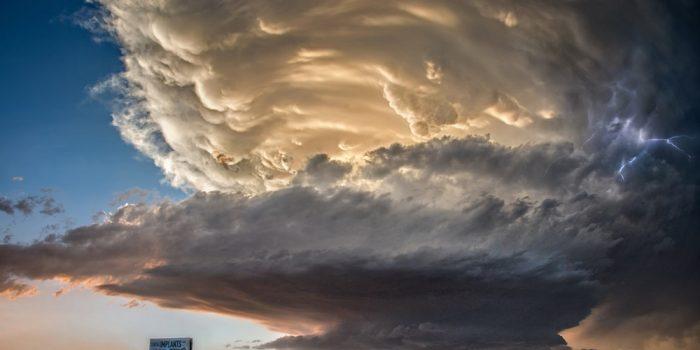 Jody Miller Storm Cloud – 6 98542