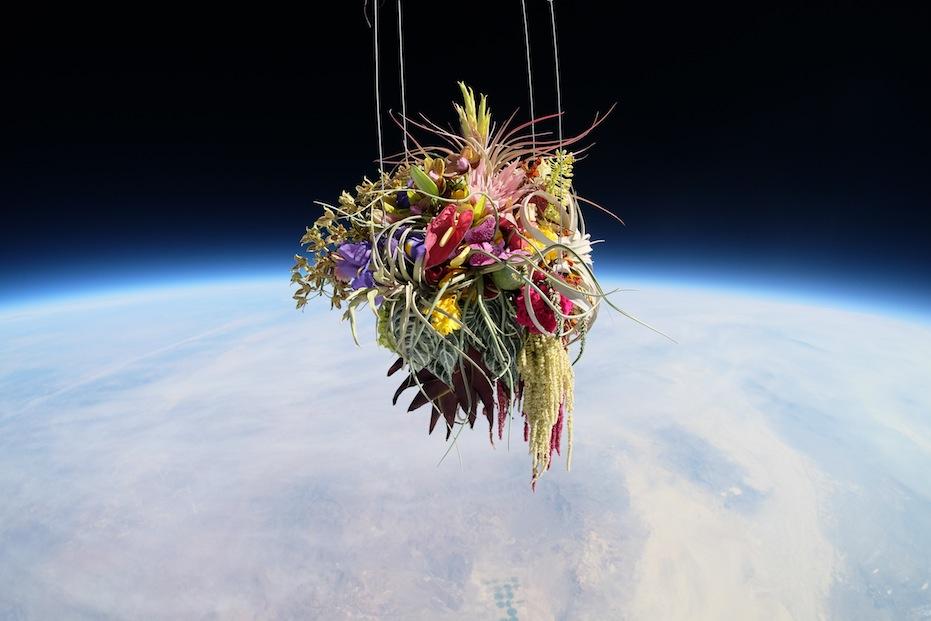Makoto Azuma - Exobiotanica Botanical Space Flight - 9552412