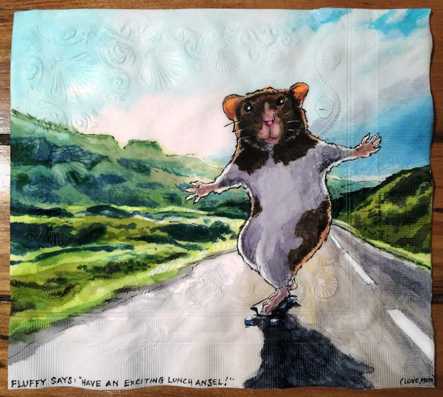 Nina Levy - Napkin Drawings - Fluffy Longboards an Icelandic Highway