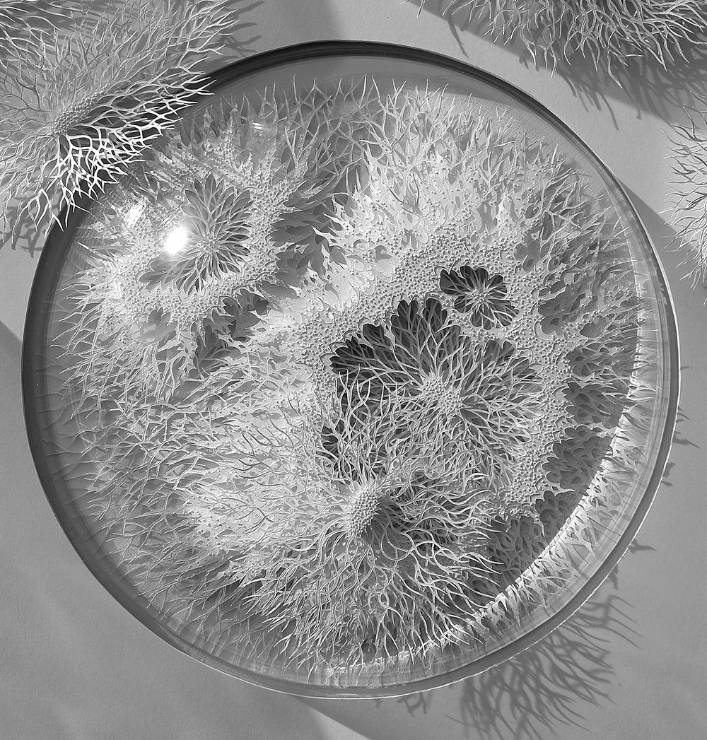 Rogan Brown - Outbreak - Paper Microbes  1-58757895