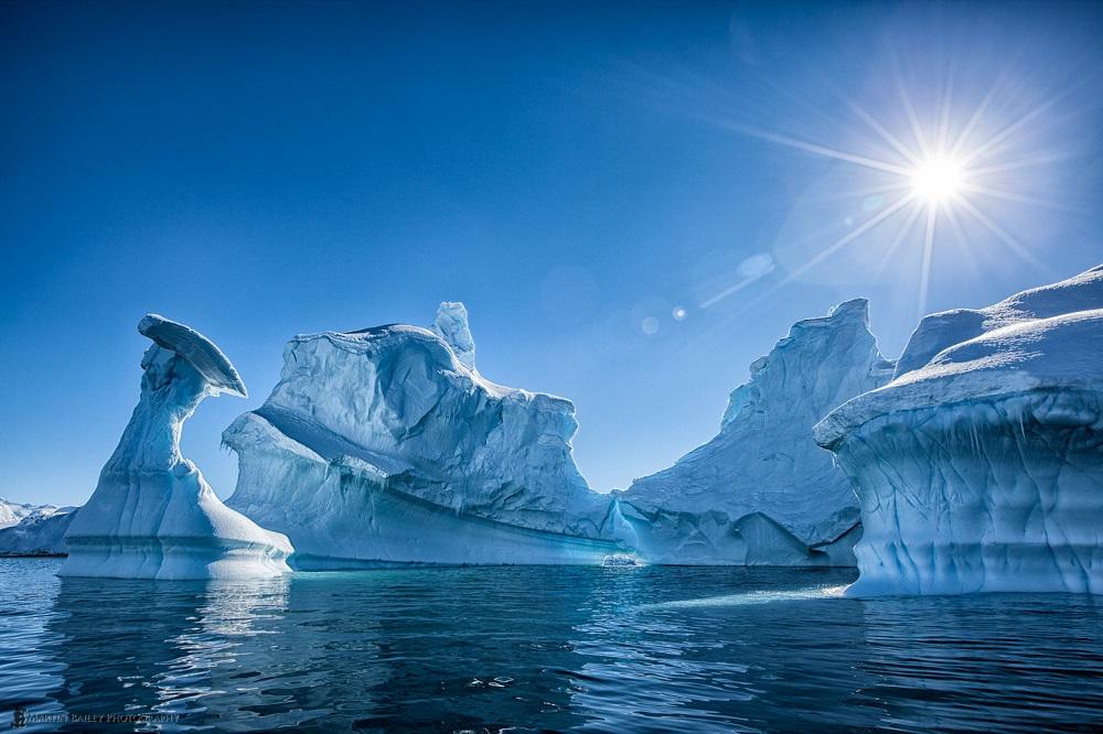 Portal Point Icebergs - Martin Bailey Antarctica Iceberg