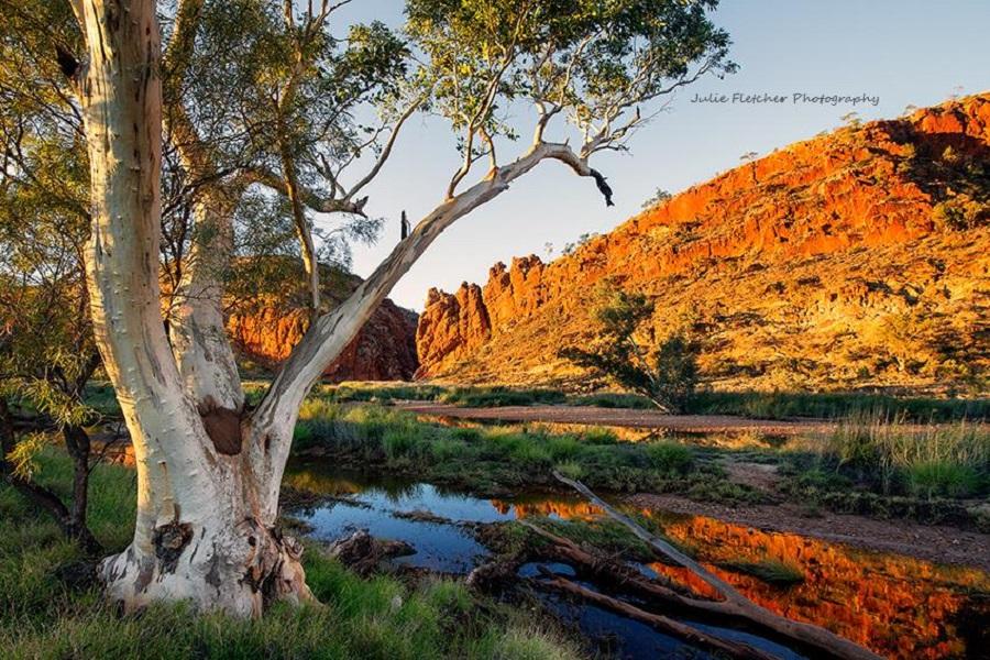 julie-fletcher-australia-Glen Helen Gorge West Macs NT