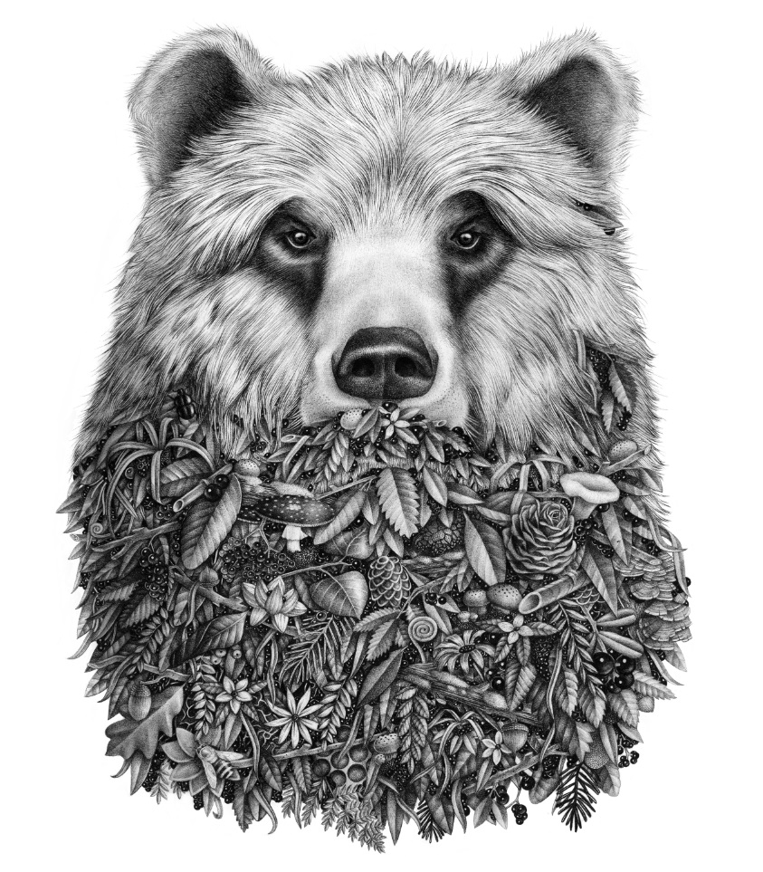 violaine and jeremy - Pencil Drawings - L OURS