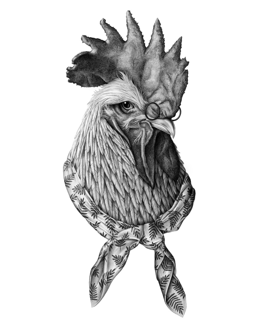 violaine and jeremy - Pencil Drawings - le coq