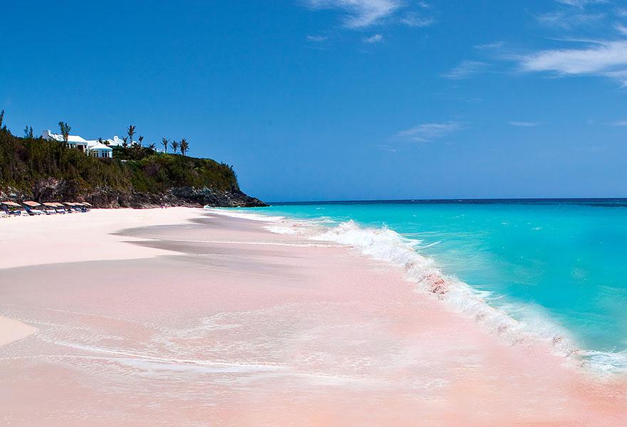 5-Pink Sand Beach, Bahamas