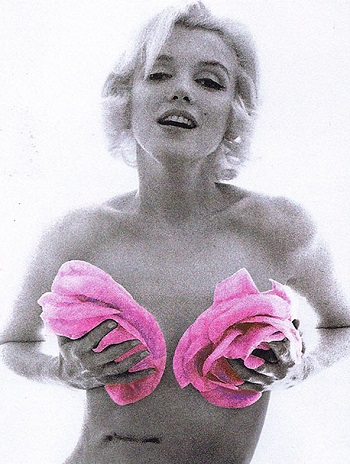 Bert Stern - Marilyn in Pink Roses from The Last Session, 1962