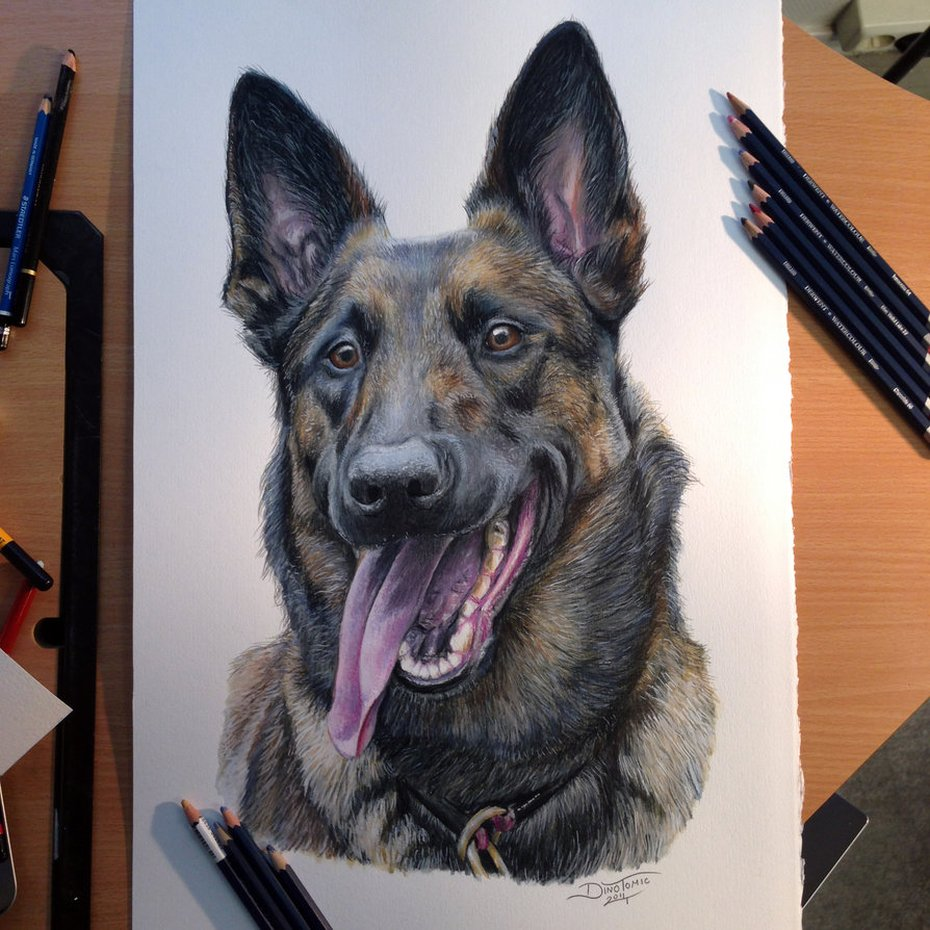 Dino-Tomic-realistic-pencil-drawings - 569866