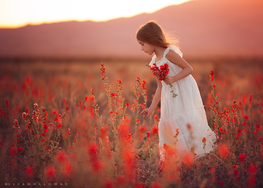 Lisa Holloway - children-nature 369523