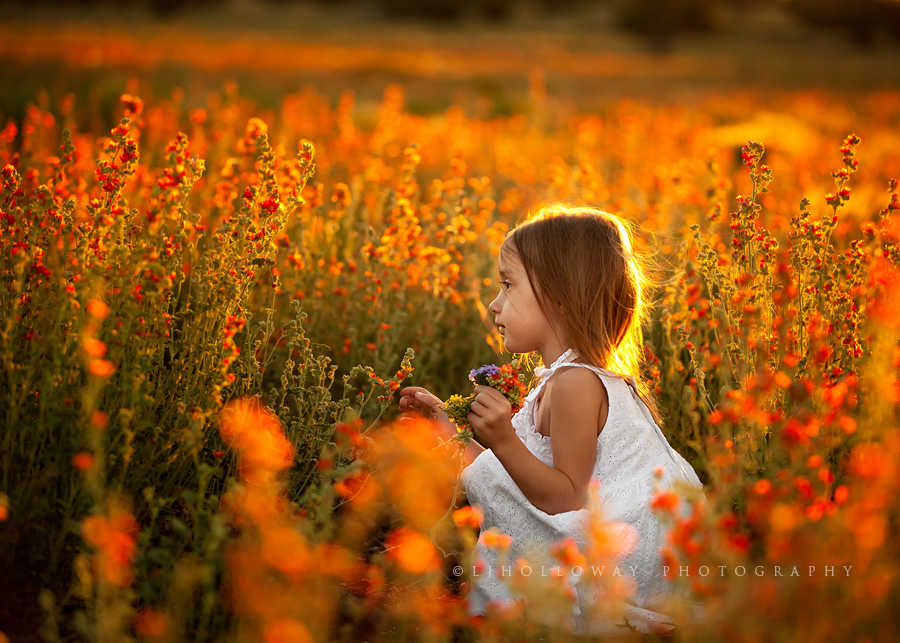 Lisa Holloway - children-nature 569866
