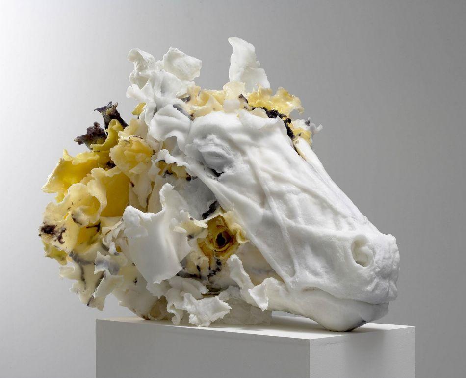 Rebecca Stevenson - Head Sculptures Flower Art 986523