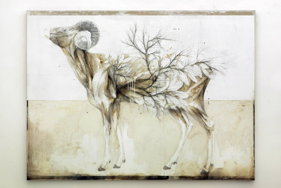 Nunzio Paci - Pencil and Oil Paintings 86956x