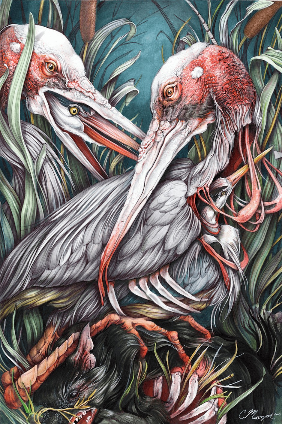 Christina Mrozik-Drawings-Nestlings-2