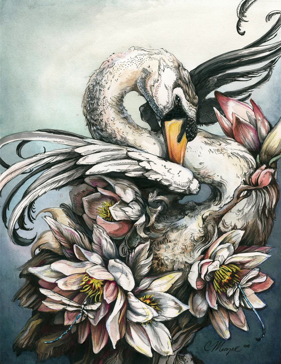 Christina Mrozik-Drawings-Swan