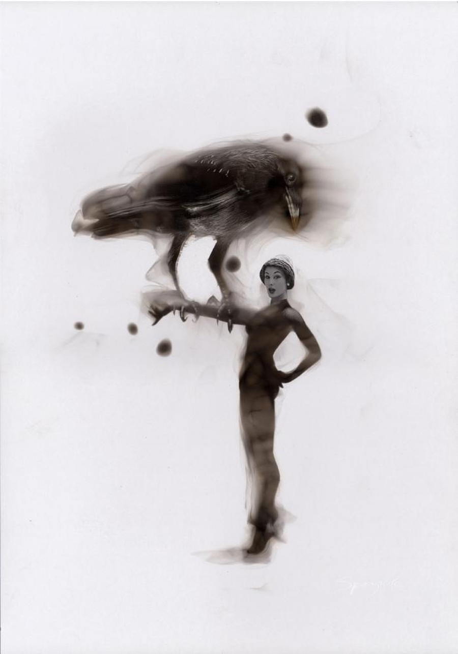 Steven Spazuk - Bird Paintings with Soot 98623
