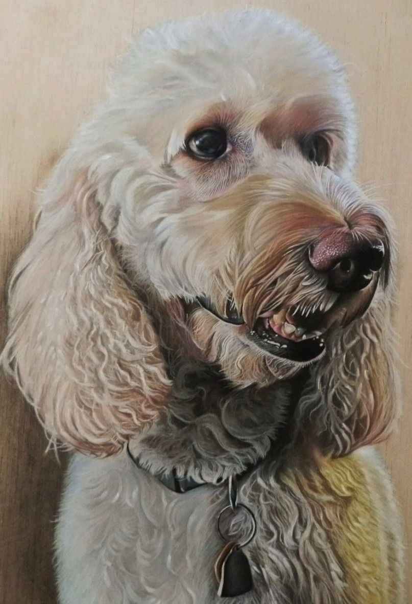 Hyper Realistic Drawing Wood Ivan Hoo Dalai Goldendoodle Feature