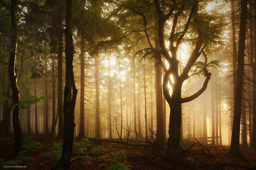 Kilian Schönberger-Photography-landscape-65236
