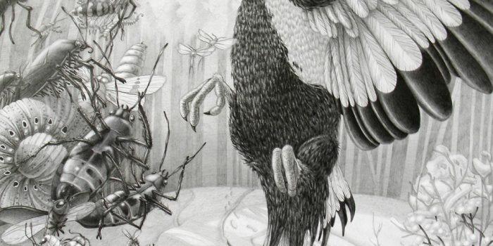 Lena Klyukina Pencil Drawings Scatter