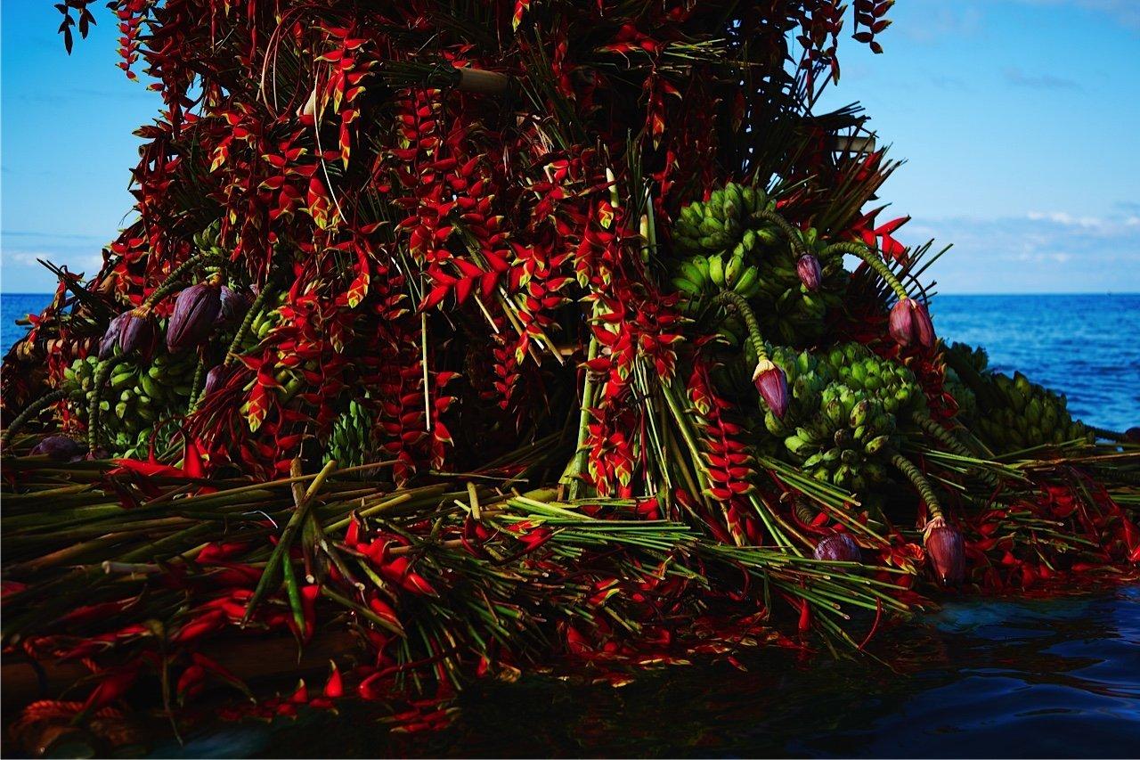 Azuma Makoto-Dagat-Bulaklak-Sea-Flower 0142-856