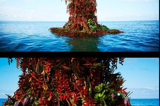 Azuma Makoto Dagat Bulaklak Sea Flower – Feature