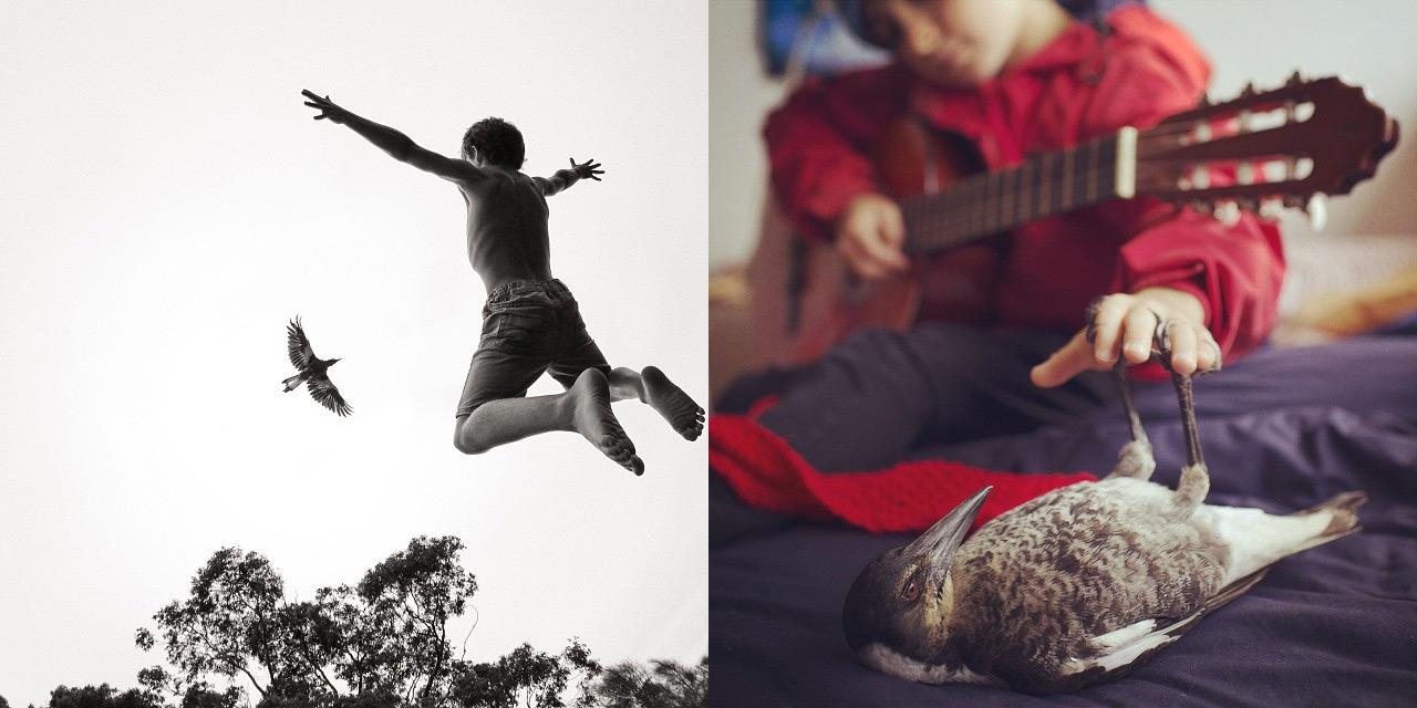 Cameron Bloom Photos Son Noah Pet Bird Penguin 4936