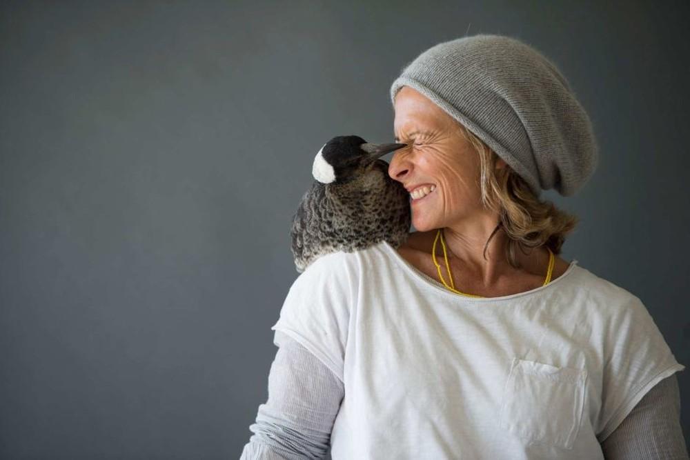 Cameron Bloom Photos - Sons Magpie bird penguin 4859