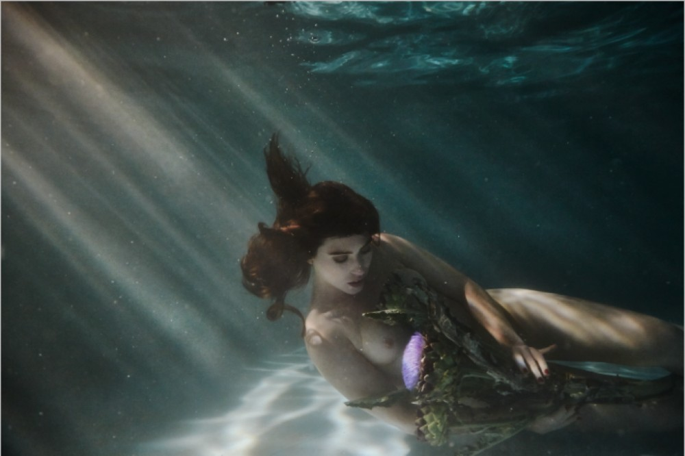 Claudia Legge Underwater Photography 2369