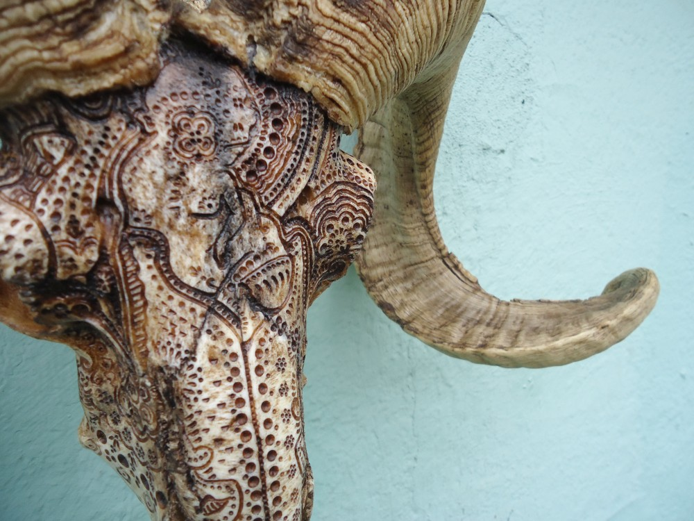 Jason borders carves amazing patterns into animal skulls