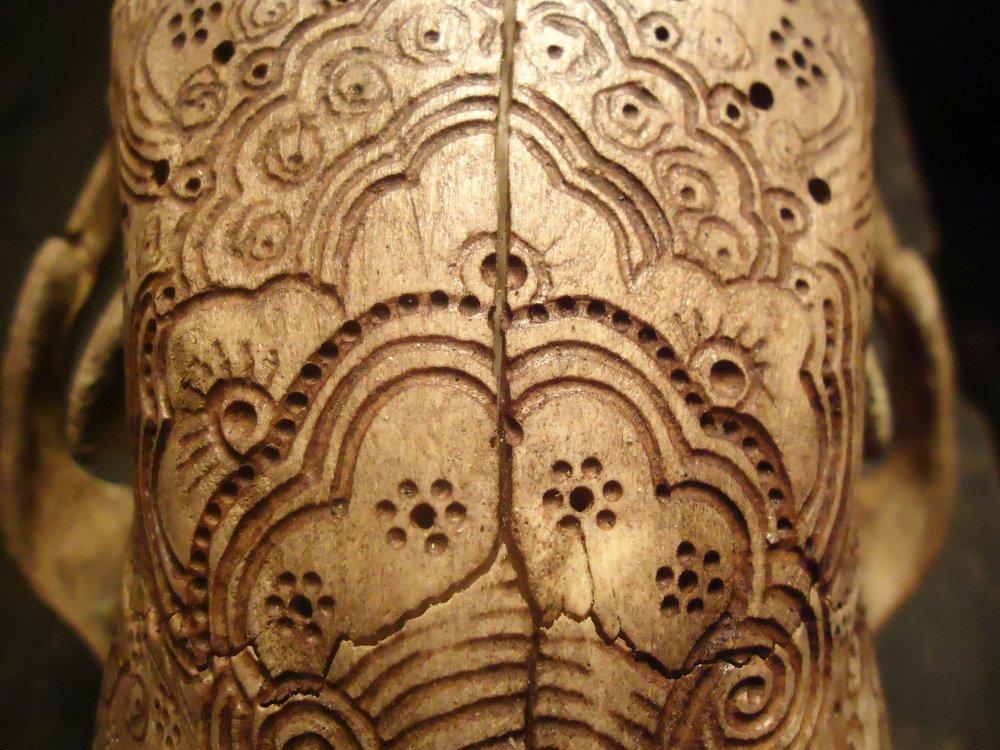 Jason Borders carved-bone-black-bear-4587