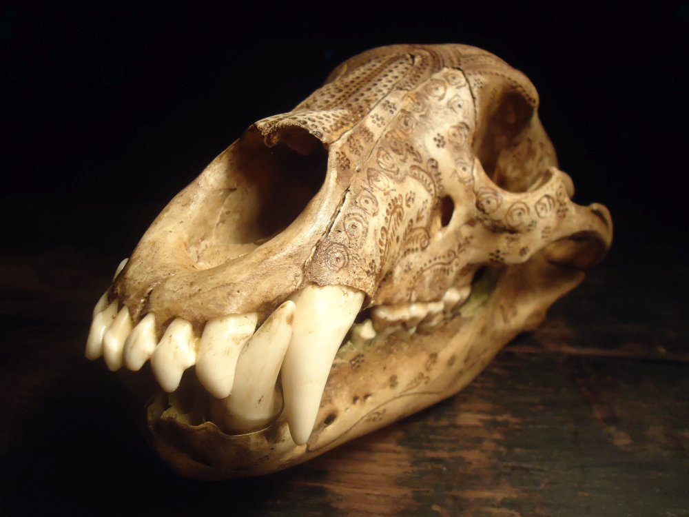 Jason Borders carved-bone-black-bear