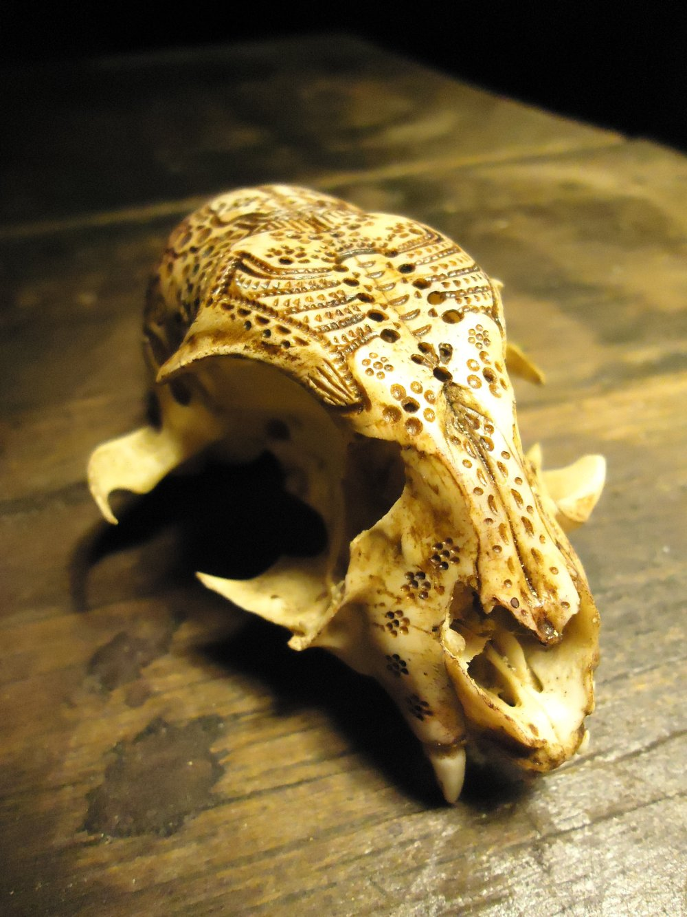 Jason Borders carved-bone-cat-474-41