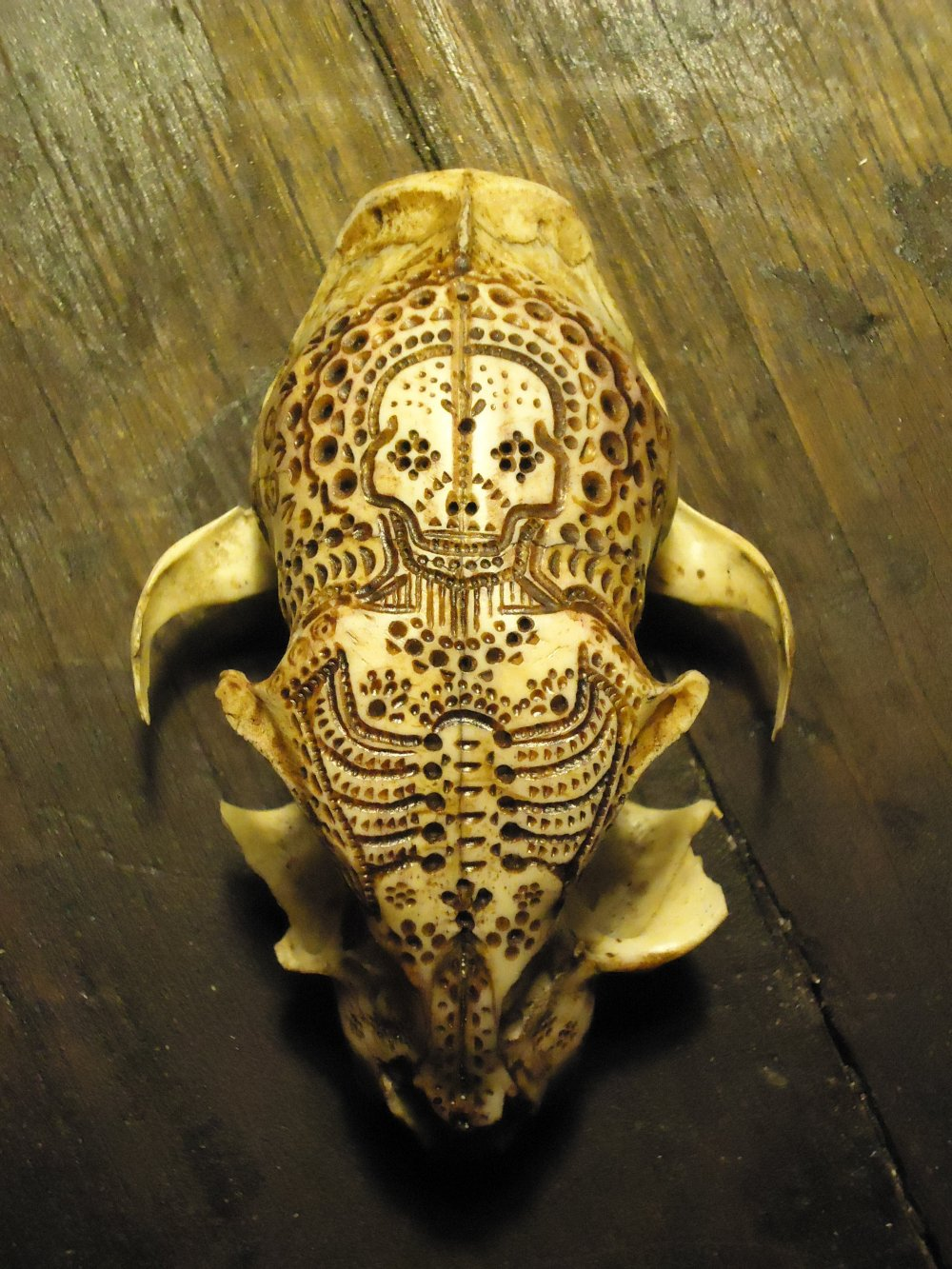 Jason Borders carved-bone-cat-474