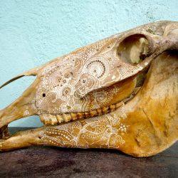 Jason Borders Carved Bone Horse 458 Moments Journal