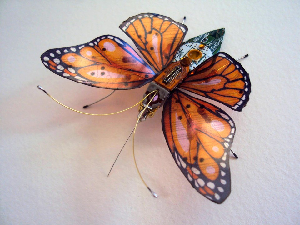 Julie Alice Chappell - insects-butterfly-sculpture-4552