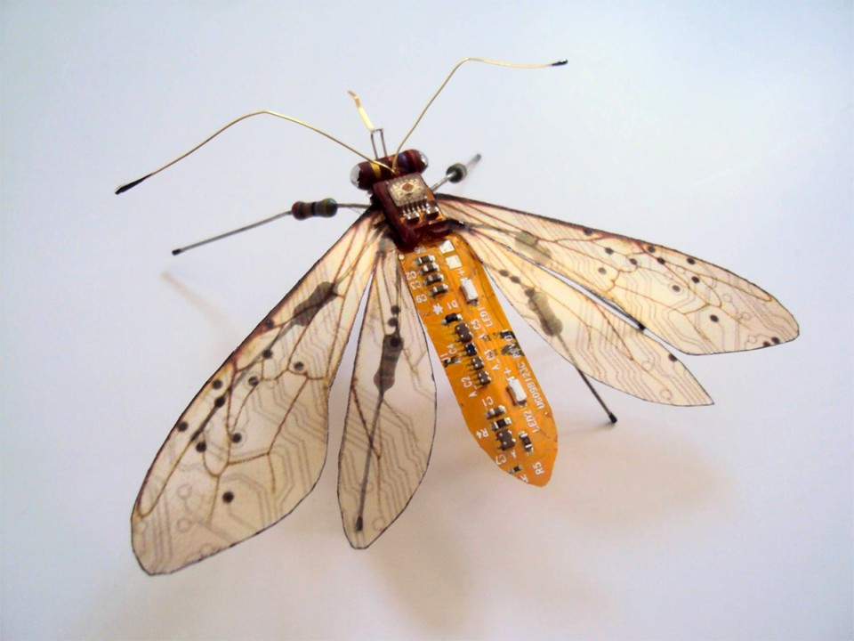 Julie Alice Chappell - insects-butterfly-sculpture-7458
