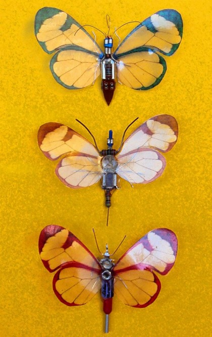 Julie Alice Chappell - insects-butterfly-sculpture-feature