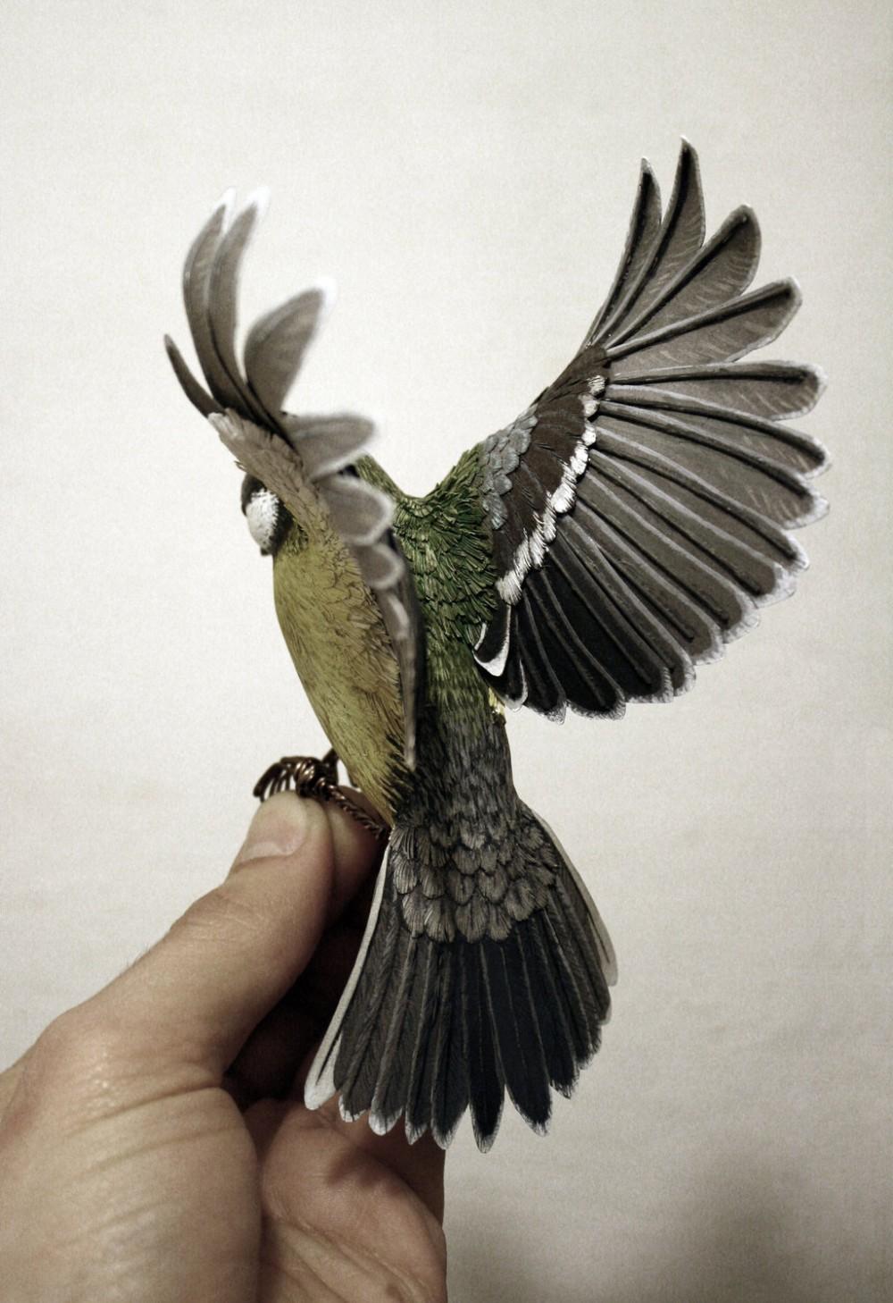 Zack Mclaughlin Wood Paper Bird 4896