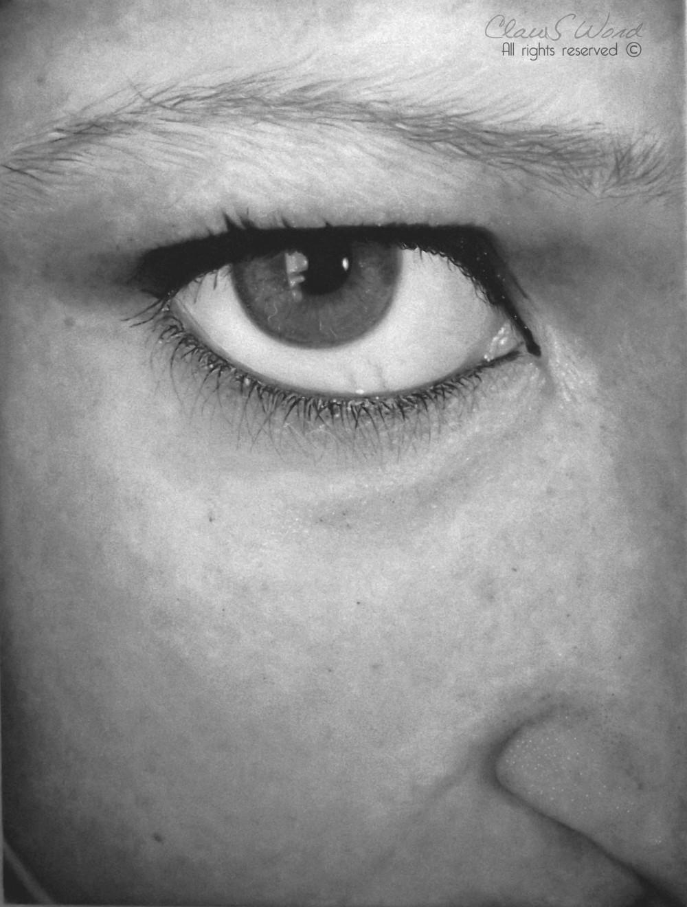 Claus Word Oil Paintings Realistic_Eye