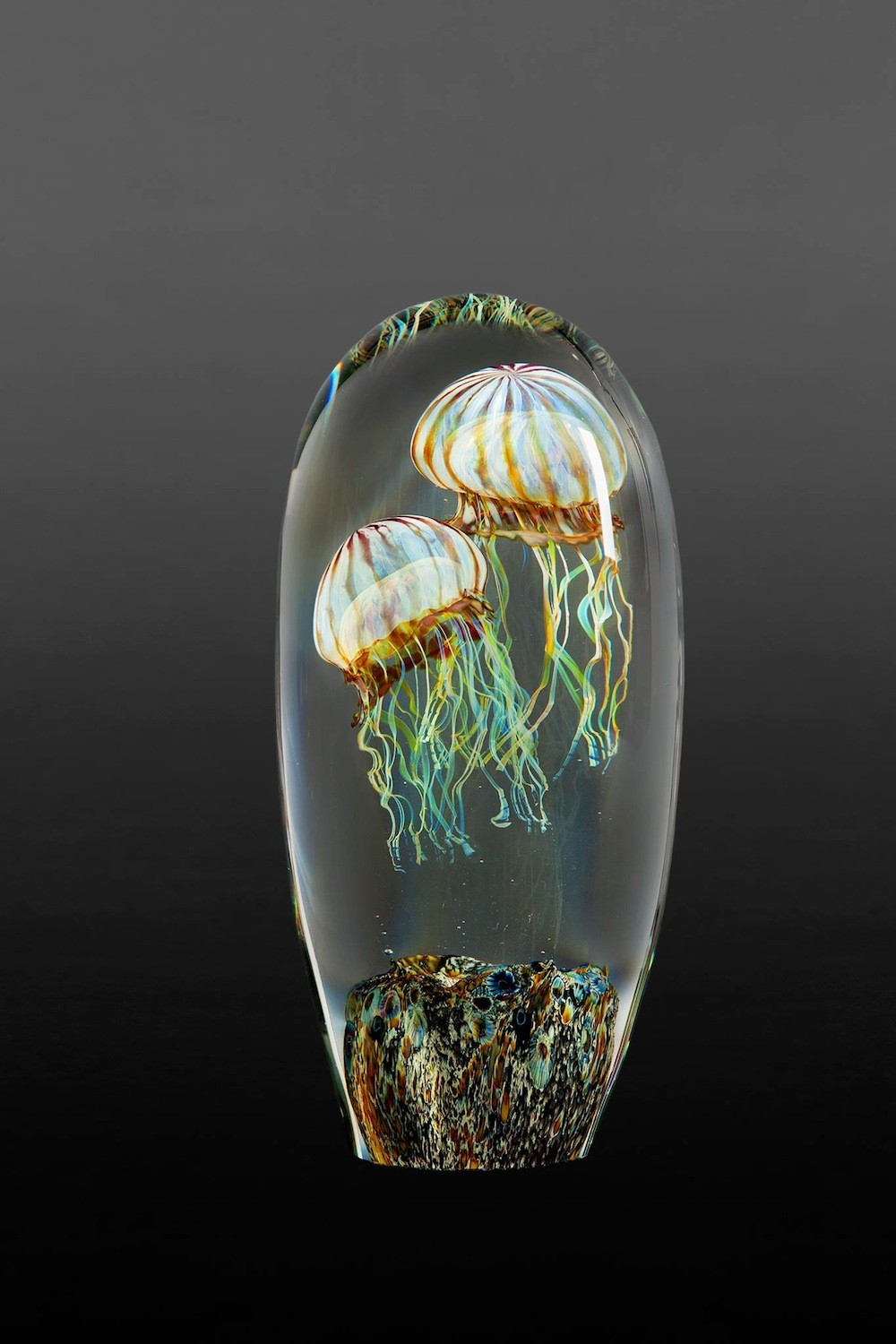 Rick Satava Glass Blown Jellyfish 156awk