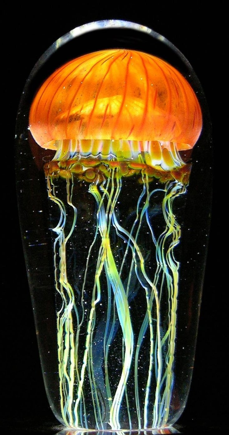 Rick Satava Glass Blown Jellyfish 425edr Feature