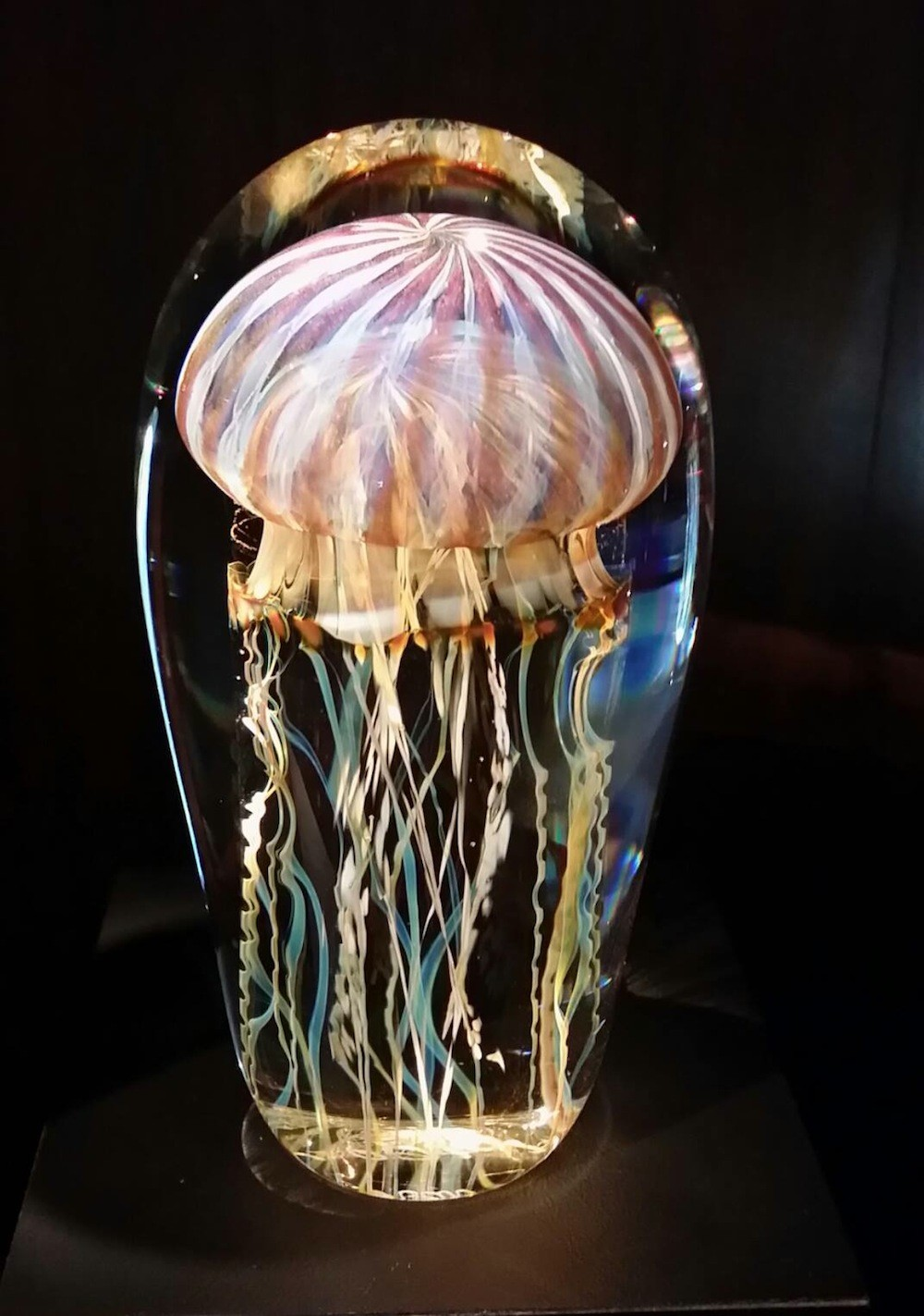 Rick Satava Glass Blown Jellyfish 715aws